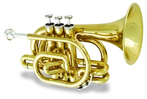 Jupiter Bb Pocket Trumpet and Slide Trumpet Model 516BL